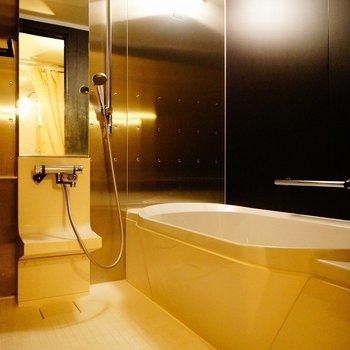 広いお風呂でのんびり※写真は前回掲載時のものです。