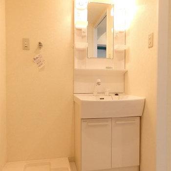 洗面台、脱衣所は清潔感あり ※写真は別部屋