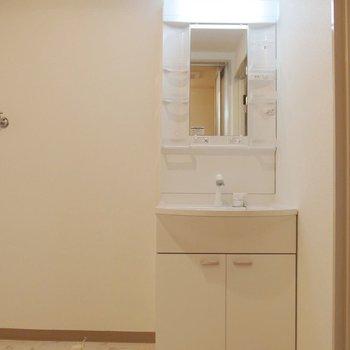 洗面台。脱衣所もゆったりめ。※写真は前回募集時のものです