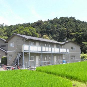 green village88