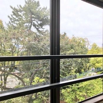 バルコニーは無いので窓からの景色。素敵だ……♩