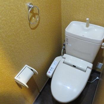 温水便座付きのトイレです。綺麗な壁紙ですね。