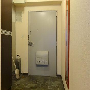玄関にはシューズボックスあります。※家具等は全て撤去されます