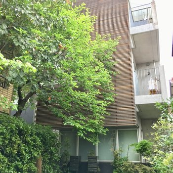 奥まった所にあるマンション。木々に覆われています!