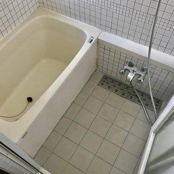 浴室はガラス張りになっているオシャレ空間。※写真は通電前