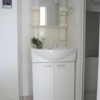 洗面台はドレッサータイプ※写真は2階の同間取り別部屋のものです