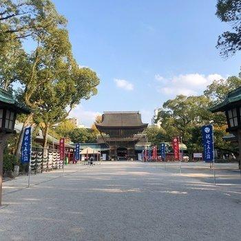 近くの筥崎宮までお散歩に来ました。