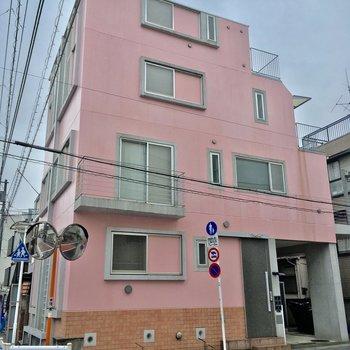 ピンク1色!か、カワイイ・・・!