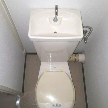 トイレはふつうな感じ