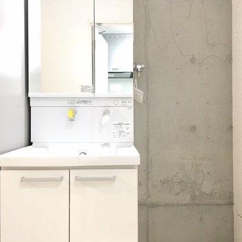 洗面台。大きい。 ※写真は別部屋