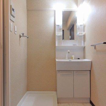 洗面台は、細身のシャンプードレッサー。洗濯機はお隣に。
