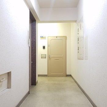 共用部は少し古さがありますが、エレベーターがあります。