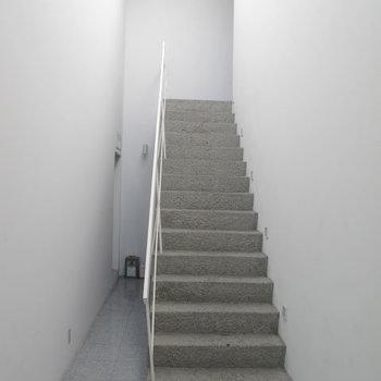 この階段を上ってお部屋まで。美術館みたいな雰囲気です。