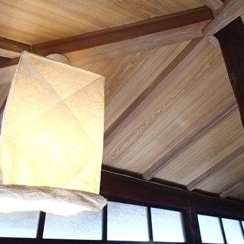 和紙の照明も良いですね〜。