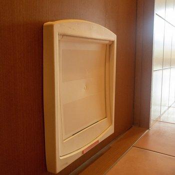 扉にはペット用の小さな扉があります。