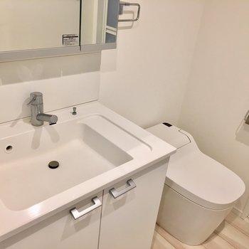 大きくきれいな洗面と、ウォシュレット付きのタンクレストイレ。