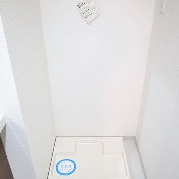 洗面台の右となりに洗濯パンがあります。