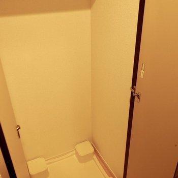 洗濯機お置き場は別で扉付き。
