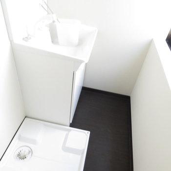 玄関入って目の前の扉を開けると洗面台と洗濯機置場が。