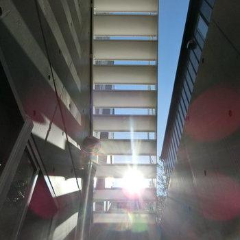 日当たりも悪くない ※写真は同階反転間取りの別部屋