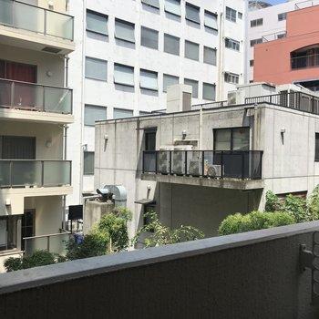 角部屋のバルコニーからは隣の住宅が見えます。