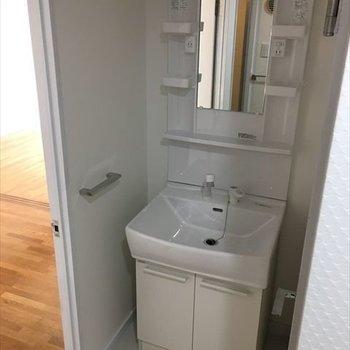 洗面台はシンプルなタイプ。