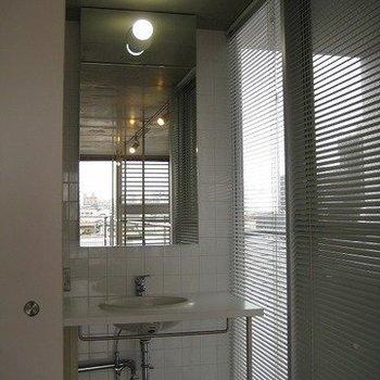 洗面は小さめ(写真は同じ建物の別部屋です。間取りは同じ。)