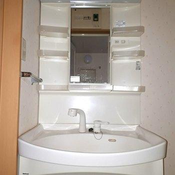 洗面台は、よくあるやつ ※照明なしの時のお写真です