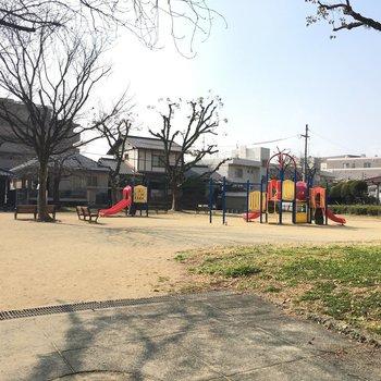 目の前に公園があります。