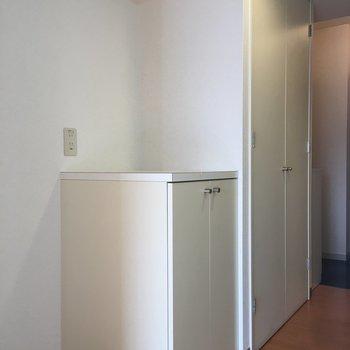 横には大小2つの収納スペース!(※写真は9階の反転間取り別部屋のものです)