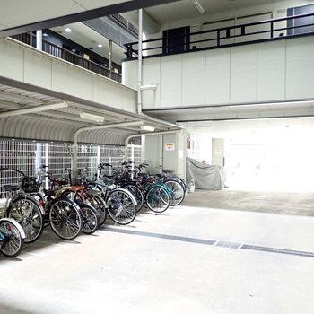 自転車がずらーっと。