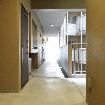 廊下はちょっと暗めだけど清潔感たっぷり