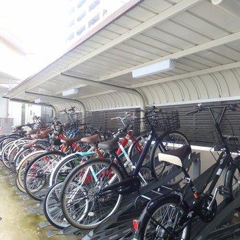 自転車はAL内におけて安心◎