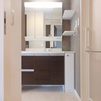 洗面台は収納棚が便利。 ※写真は別部屋