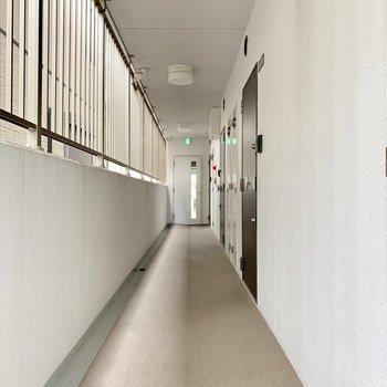共用廊下キレイです。