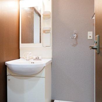 独立洗面台と洗濯機はお隣さん。