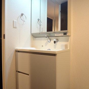 洗面台も収納が多い!(※写真は間取り反転の別部屋です)