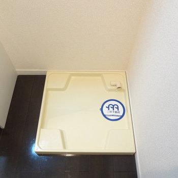 洗濯パンもありますよ。(※写真は間取り反転の別部屋です)