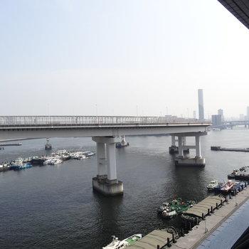 東京湾はわたしのもの