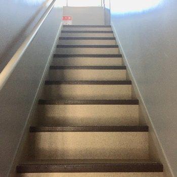 お部屋までは少し急で狭い階段、、