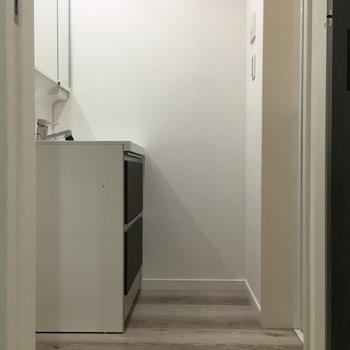 【1F】コチラ洗面台のスペース。※写真は1階の同間取り別部屋のものです