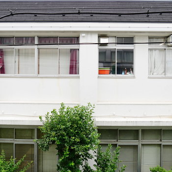 窓からの眺望はお隣の施設。