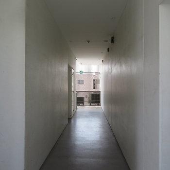 廊下から天井が高いんです
