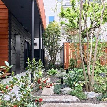 エントランスを入ったらこんな可愛いお庭がお迎えしてくれますよ〜