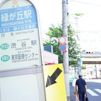 渋谷までのバスも出てます!