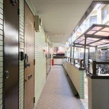 共用廊下、きれいです。