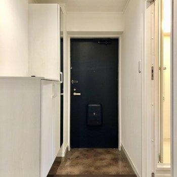 玄関も広々なのが嬉しいですね!シューズボックスも大きなものが2つあります。