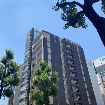 12階建ての大きなマンション。
