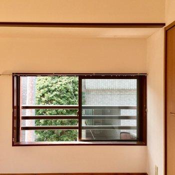 南側の窓は低い位置にあって、お気に入りの場所になりそう。
