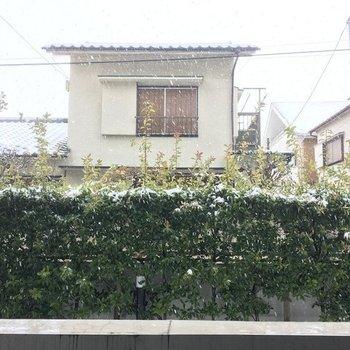眺望は緑の垣根と一軒家。けっこう空が見えて開放感があります。